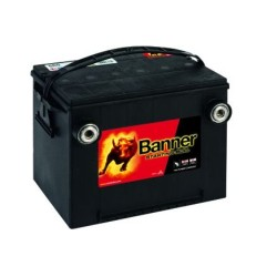 Banner 560 10 12v 60Ah 675CCA Car Battery (560 10)