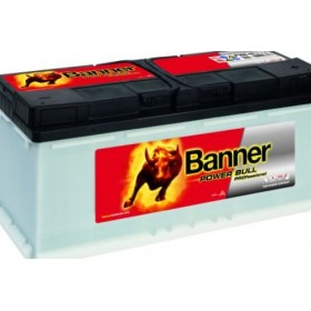 Banner 019 12v 100Ah 800CCA Car Battery (P100 40) (019)
