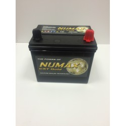 Numax Gold CXT895 (895)